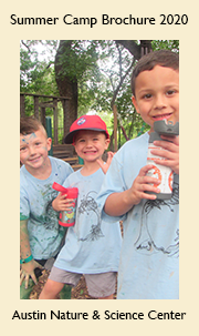 Austin Nature & Science Center Summer Camp 2020 Brochure