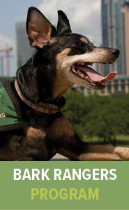 Bark Rangers