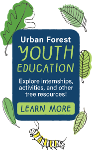 Urban Forest Youth Education