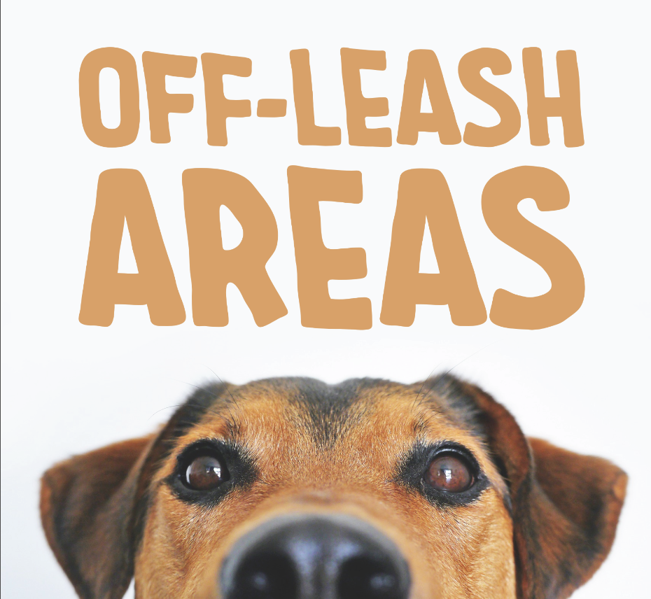 Off-Leash Areas