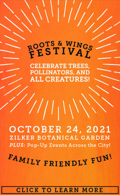 2021 Roots & Wings Festival Kick-Off Event