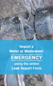 Use the Online Leak Report Form