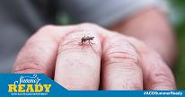 Fight the bite and Zika virus