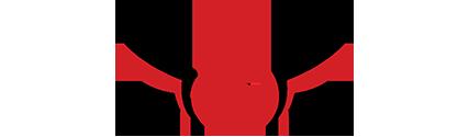 Robotics Emergency Deployment team logo