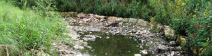 Erosion Control & Stream Restoraton