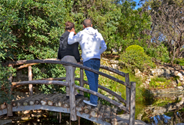 A couple stands on a bridge at Zilker Botanical Garden.