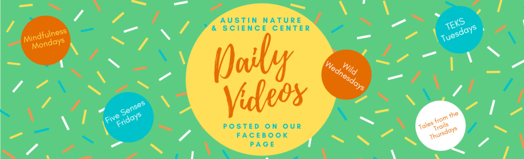 Austin Nature & Science Center Daily Videos posted on our Facebook page.
