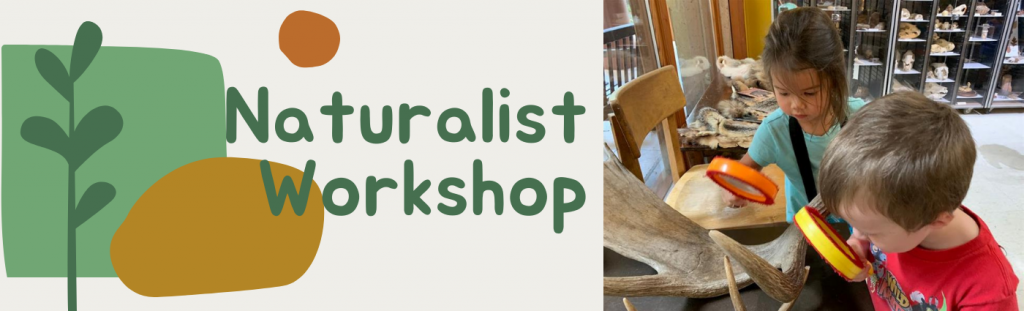 Naturalist Workshop