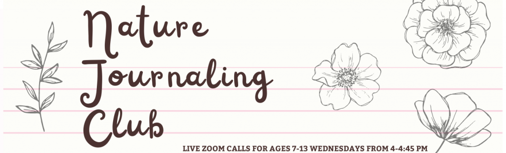 Nature Journaling Club, Live Zoom calls for ages 7 -13 Wednesdays from 4 - 4:45