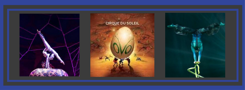 Cirque du Soleil performance at ANSC