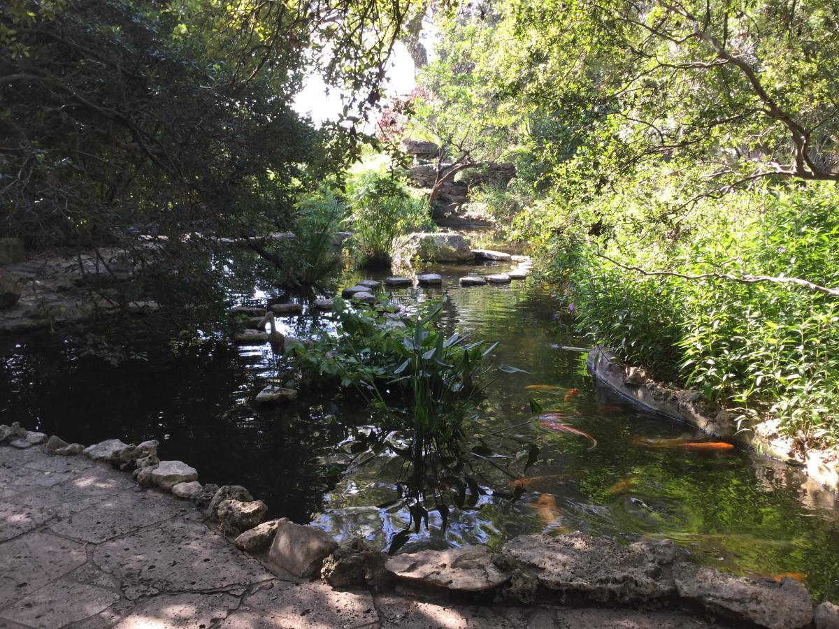 Zilker botanical garden master plan for Koi pond zoning