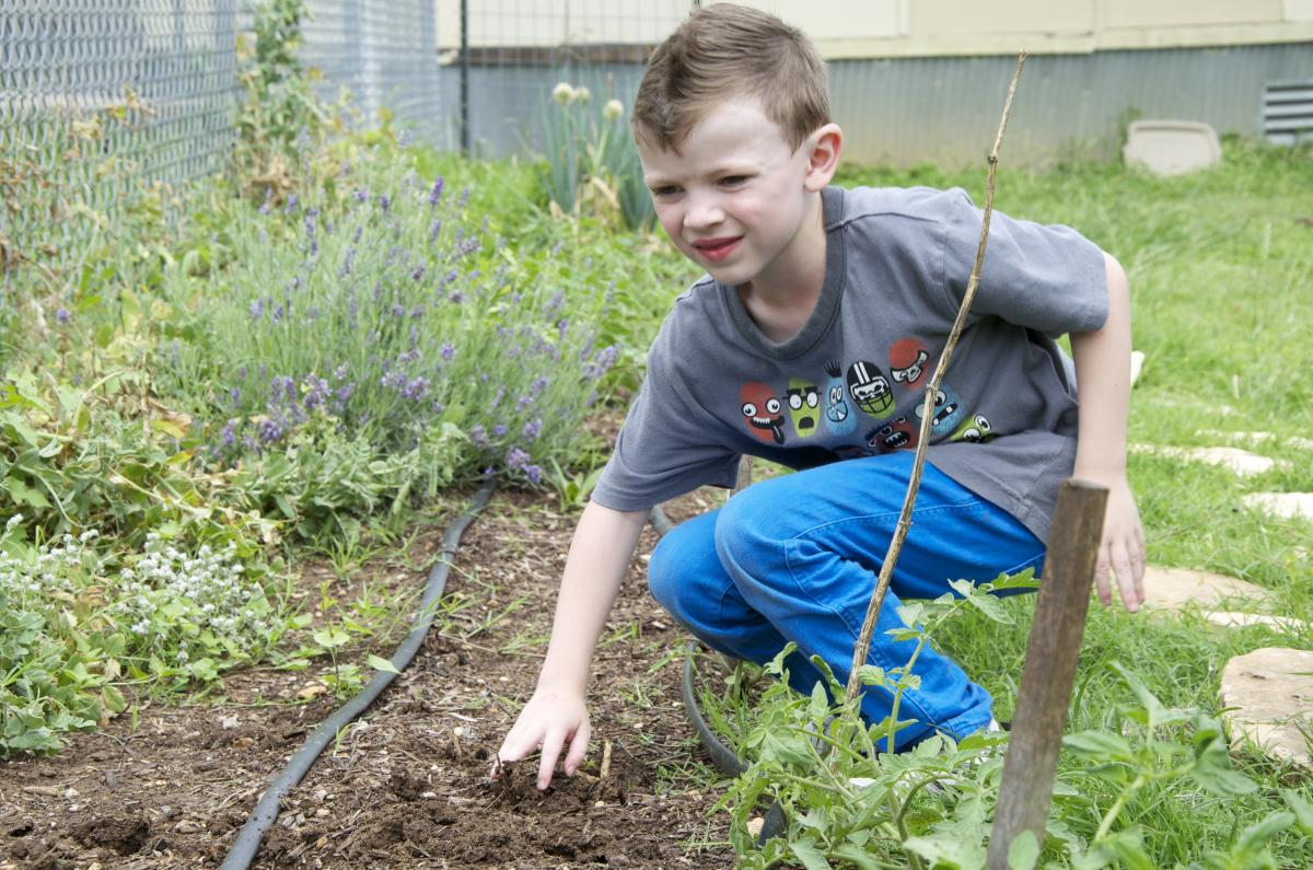 Child helping in a community garden
