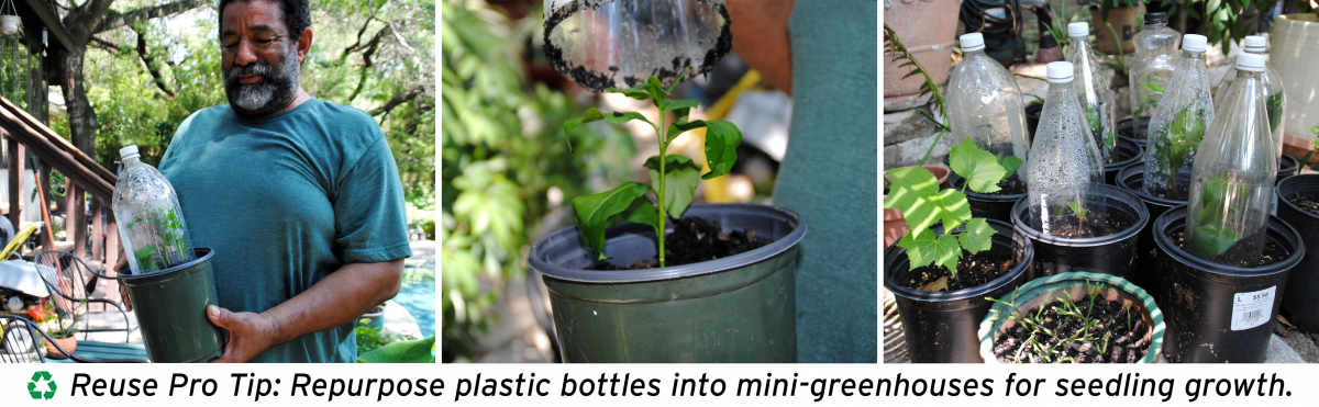 Reuse Pro Tip: Repurpose plastic bottles into mini-greenhouses for seedling growth.