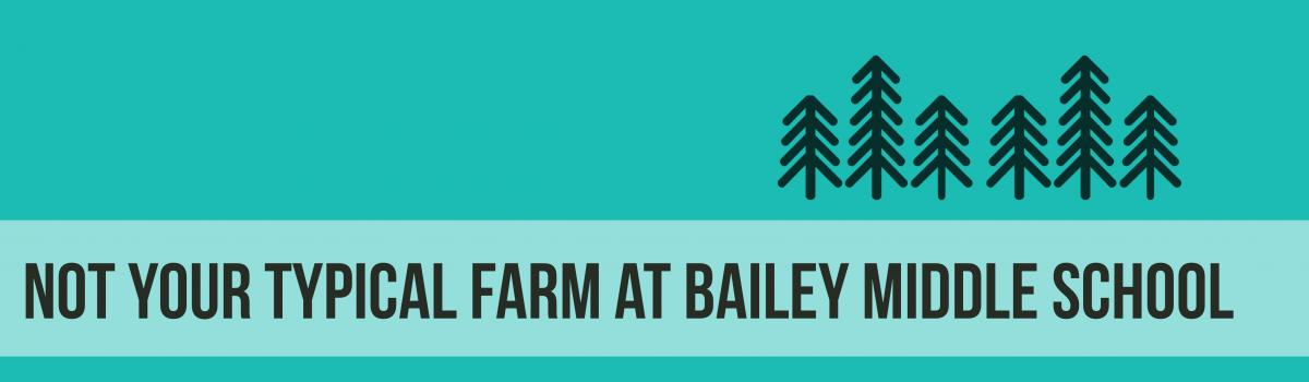 Not your typical tree farm at Bailey Middle School