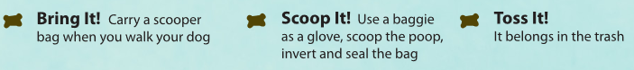 Bring it! Carry a scooper bag when you walk your dog. Scoop it! Use a baggie as a glove, scoop the poop, invert and seal the bag. Toss it! It belongs in the trash.