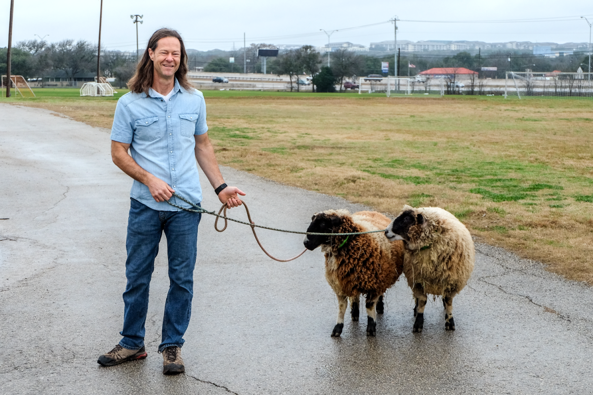 Chris Brooks with two small sheep on leashes in a school parking lot.
