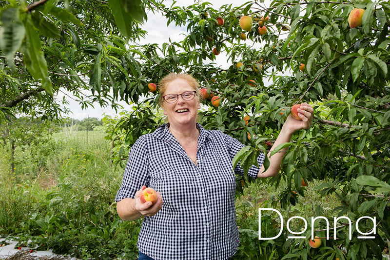 Donna picking a peach off a tree.