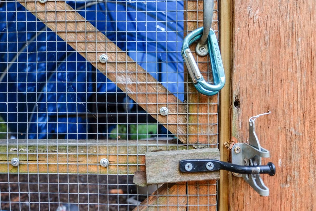 Close up of locking mechanism on coop door.