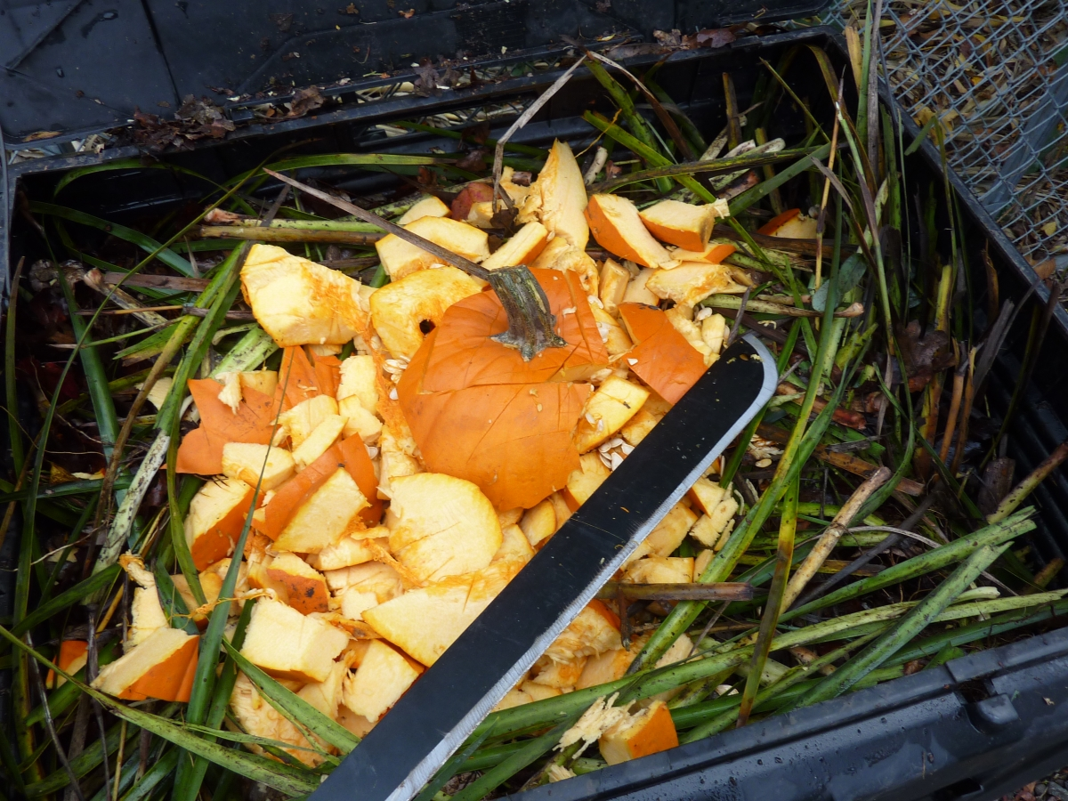 image of a pumpkin being composted