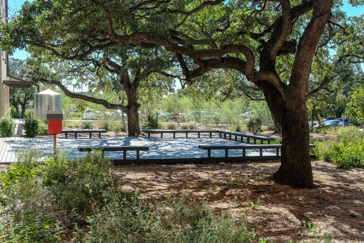 View of an outdoor classroom surrounded by native plants and a large oak tree. A silver rainwater cistern is in the background.