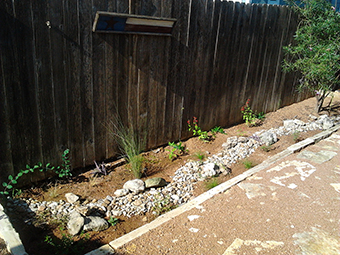 image of yard rain garden
