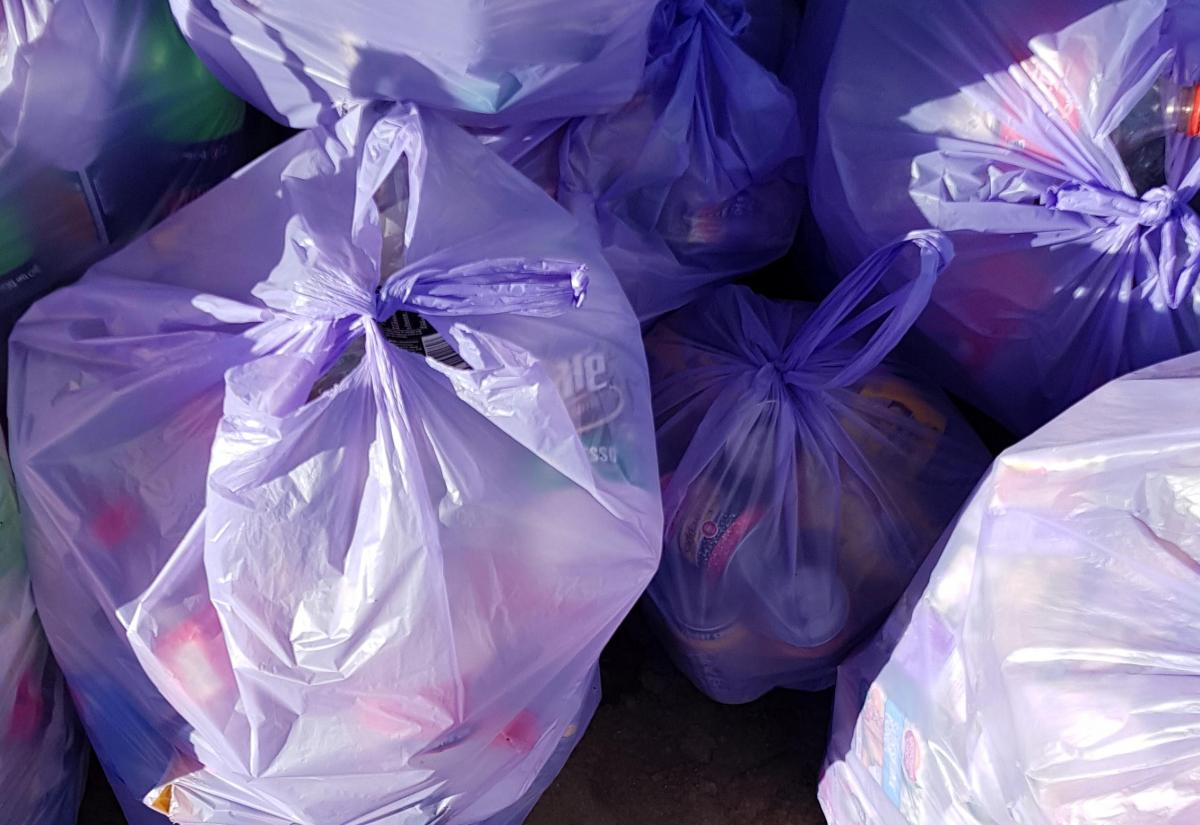 A pile of full violet trash bags