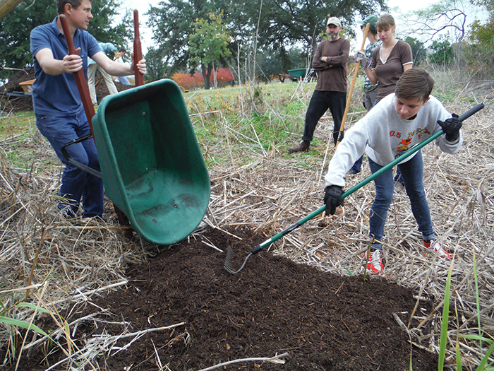 A layer of compost is added to hold moisture and provide nutrients.