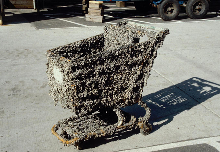 Shopping cart encrusted in zebra mussels after just a few months in infested water. Photo Credit James Lubner, U. of Wisconsin Sea Grant Institute, Bugwood.org