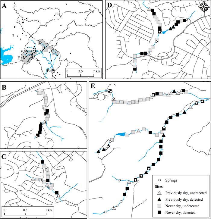 Previously dry sites and persistently wet sites where salamanders were observed during the study