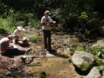 Watershed Protection Department staff surveying a creek.