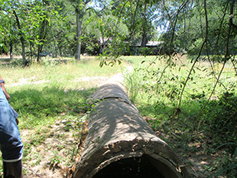 This stormdrain pipe originally stretched 100 ft across the Shoal Creek Greenbelt before discharging into Shoal Creek.  The pipe became exposed by erosion over time and was starting to break apart.