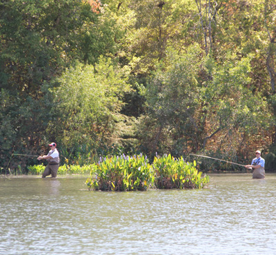 Two men fishing off the shores of Lady bird lake. The fishers have waded several feet into the water.