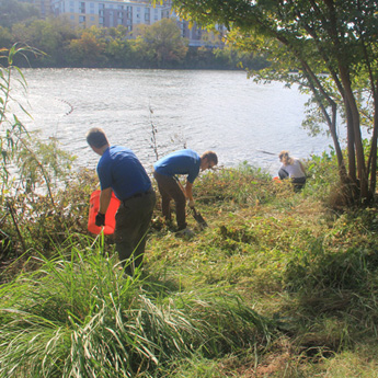 Several volunteers planting tree seedlings next to Lady Bird Lake with Austin Parks Foundation.