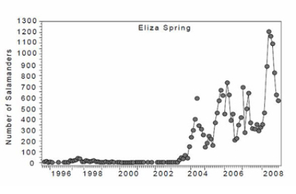 Eliza Springs Data