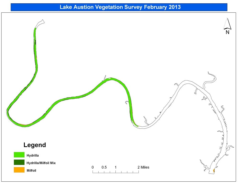 Lake Austin Vegetation Survey February 2013