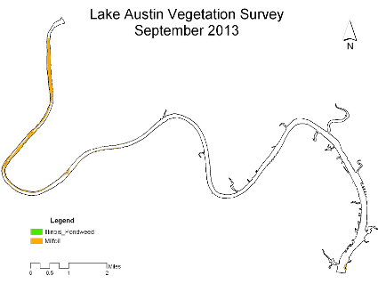 Lake Austin Vegetation Survey September 2013