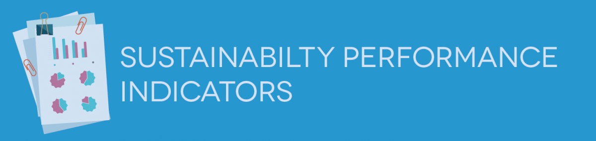sustainability performance measures