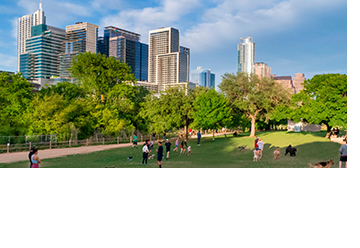 graphic photo of downtown skyline, Lady Bird Lake, and dog park