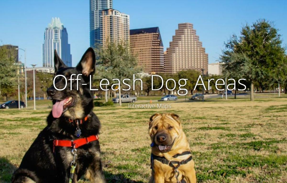 Off-Leash Dog Areas
