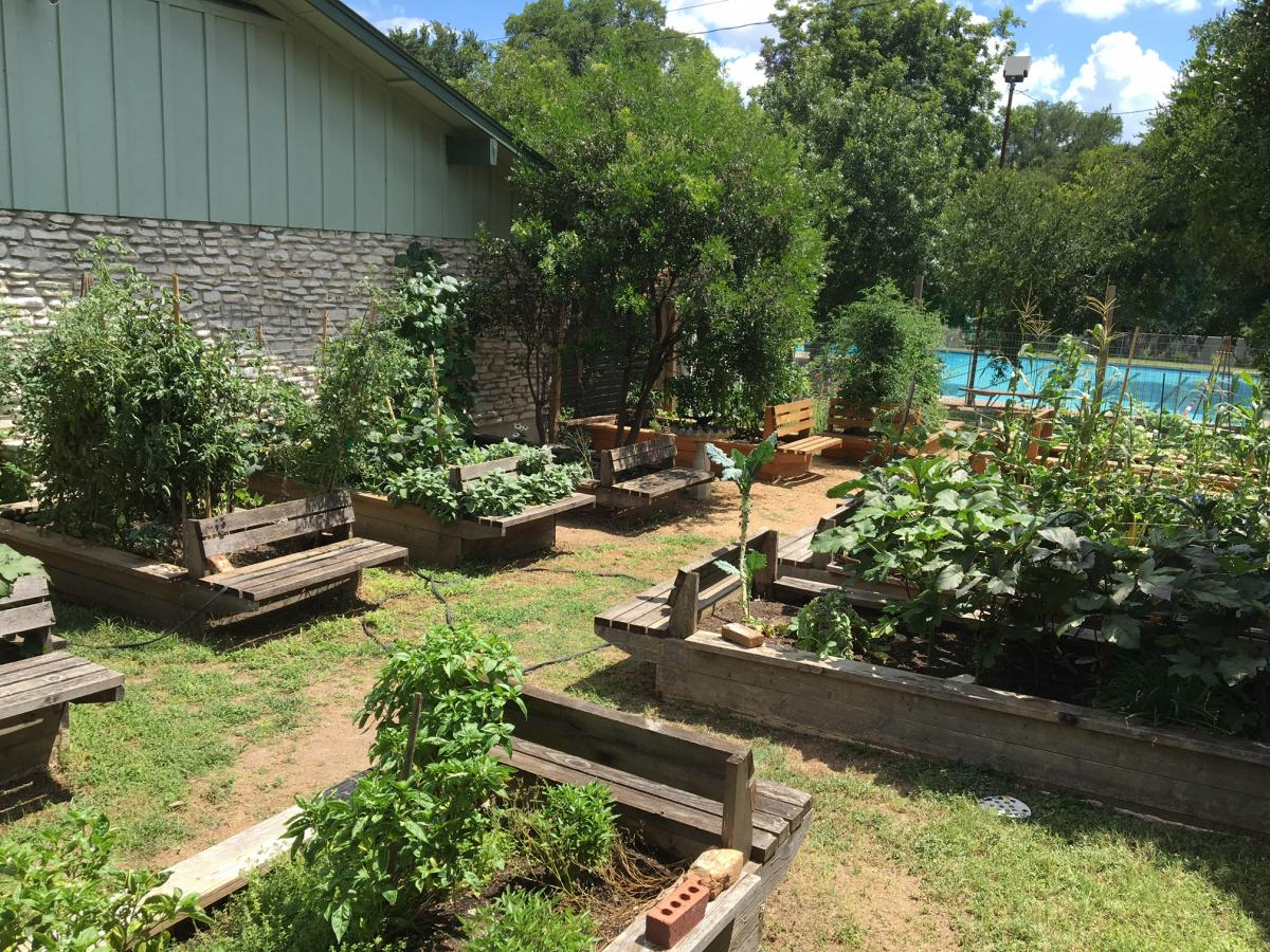 The Community Garden at Dottie Jordan Recreation Center