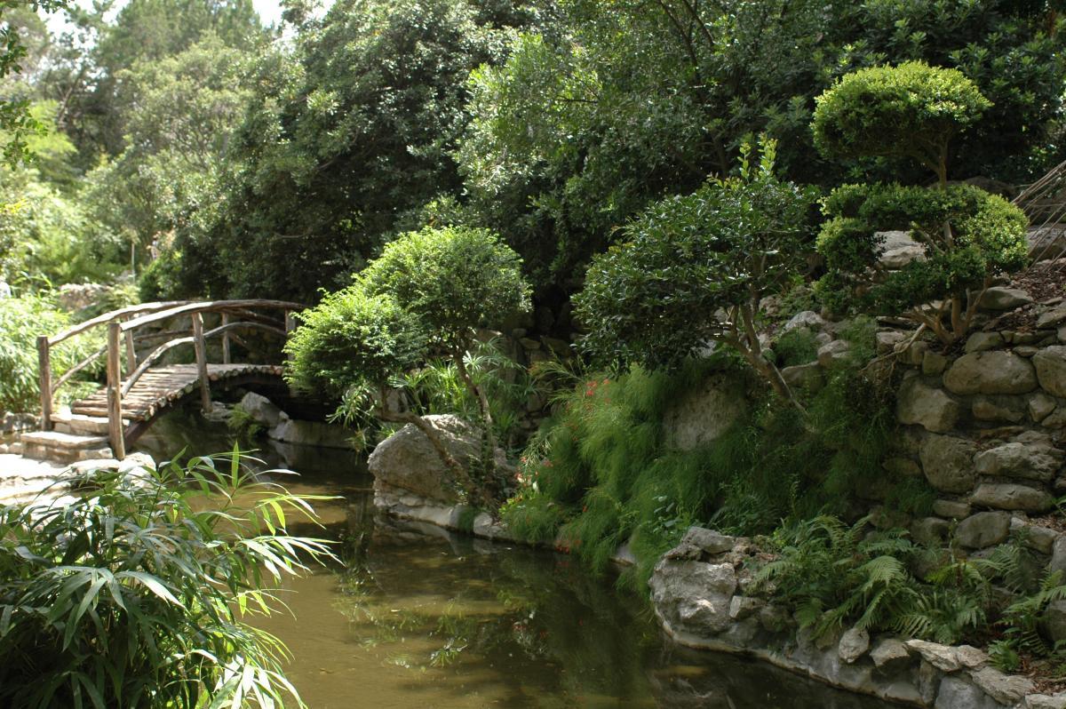 Zilker Botanical Gardens A Jewel Set Within the Heart of