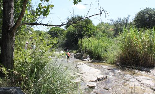 Austin Nature Science Center Austin Tx