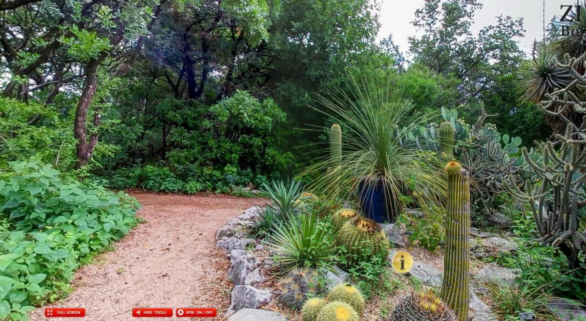Take A Virtual Tour Of Zilker Botanical Gardens!