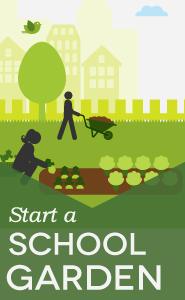 Learn how to start a school garden