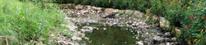 Erosion Control Stream Restoration