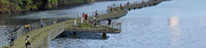 Lady Bird Lake Boardwalk