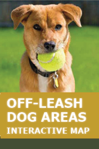 Off-Leash Dog Areas Interactive Maps